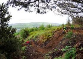 Bike Park Wales 3