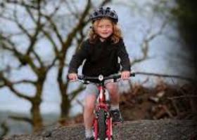 Bike Park Wales 4