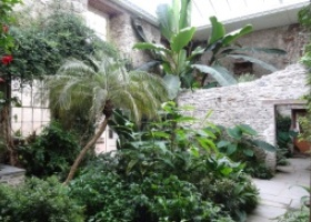 Aberglasney Gardens24
