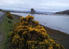 Lochranza Castle klein