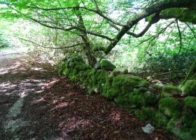 Cateran Trail dag 1 Blairgowrie naar Kirkmichael (10) klein