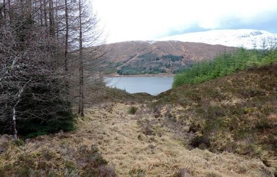 highland-nature-park-1-glencoe
